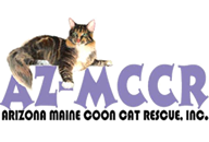 AZ Maine Coon Cat Rescue, Inc.