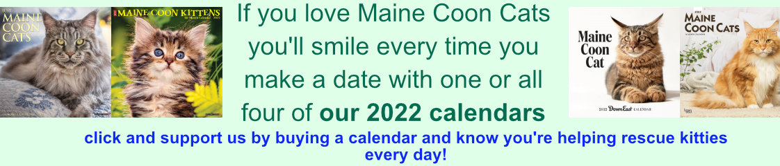 support us - buy a calendar